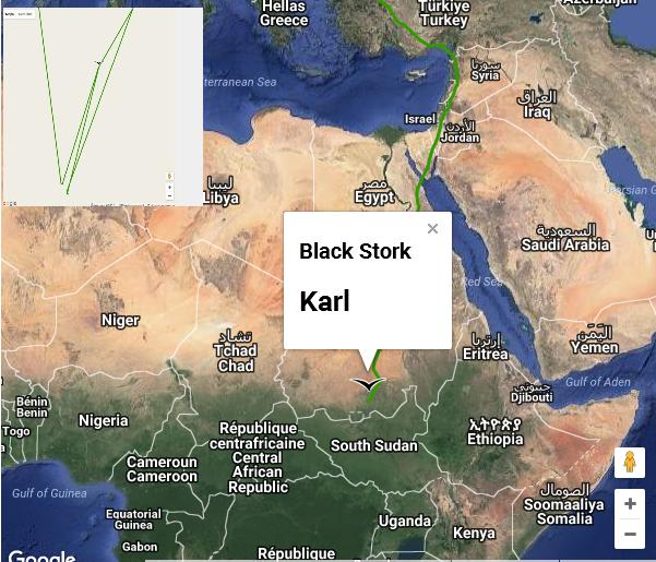 Karl migrace den 61-64