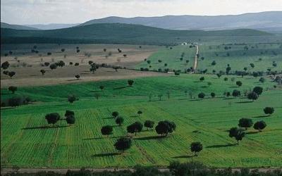 Parco Nazionale Cabañeros - Spagna